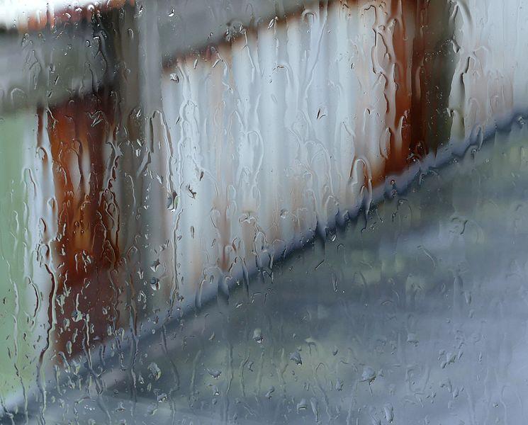 Rain_on_a_window